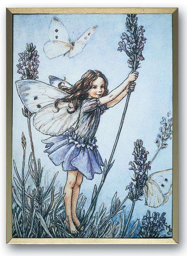lavenderfairy.jpg